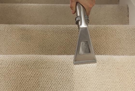 Professional-Carpet-Cleaner