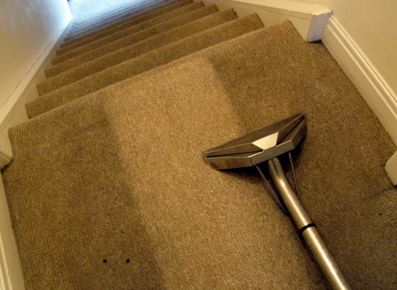 Leed Carpet Cleaning Company