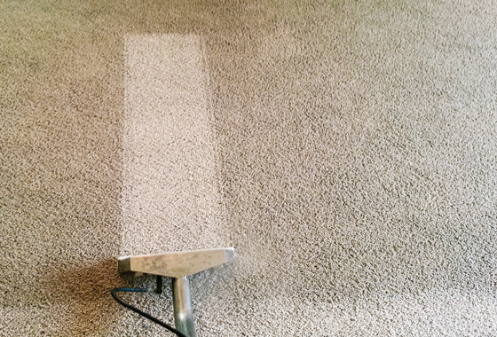 Professional Carpet Cleaning Leeds