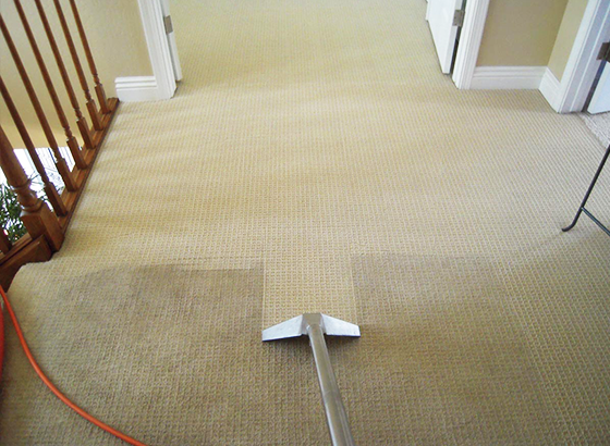 Carpet Cleaning Company