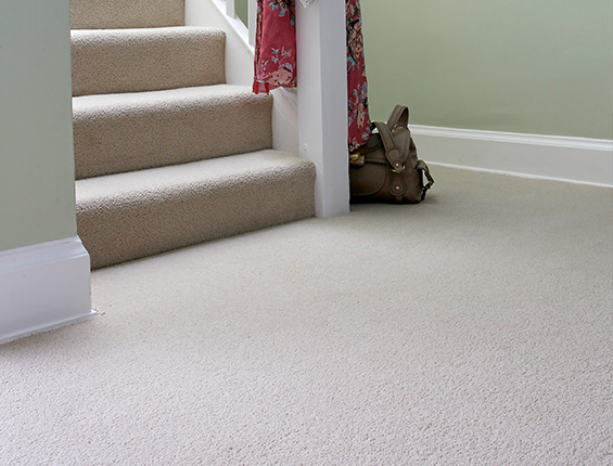 Carpet Cleaning Wakefield